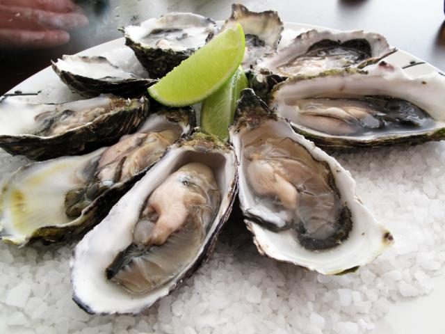 pacificoysters